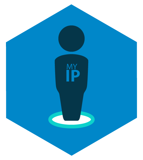 IP publica